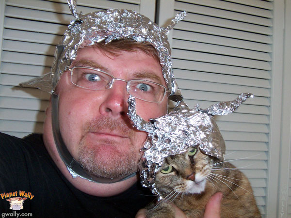 Canaille: the cat with the tin foil hat